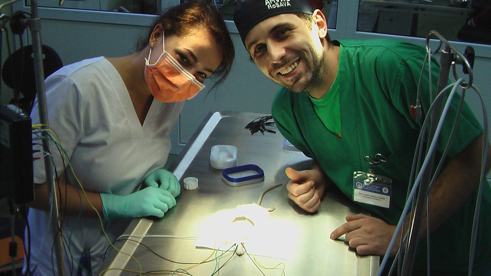 Consultații de neurologie veterinară